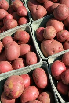 Free Red Potatoes Stock Photos - 6166403