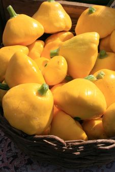 Free Yellow Squash Royalty Free Stock Images - 6166439