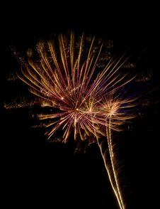 Free Fireworks Flower Stock Photography - 6166442
