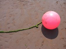Free Pink Buoy On Sand Stock Photos - 6169093
