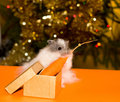 Free Christmas S Gift For Curiosity Hamster Royalty Free Stock Images - 6177709