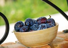 Free Plums Wooden Bowl Royalty Free Stock Image - 6170236