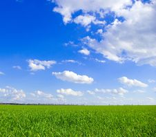 Free Field Stock Photography - 6170362