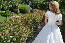 Free Bride Walking Along An Alley Royalty Free Stock Photo - 6171605