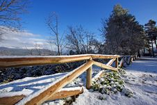 Free Covered With Snow Nature Reserve Royalty Free Stock Photos - 6171638