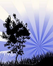 Free Tree In A Blue Star Burst Background Royalty Free Stock Photo - 6173485