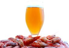 Free Beer And Shrimps (prawns). Royalty Free Stock Photos - 6174038