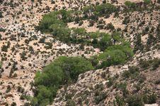 Free Escalante State Park Royalty Free Stock Image - 6174596