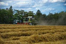 Free Harvest 6 Stock Photos - 6174933