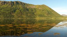 Free The Lofoten S Arrow Royalty Free Stock Image - 6177176
