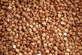 Free Dried Buckwheat Stock Images - 6180304