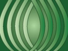 Green Ribs Royalty Free Stock Images