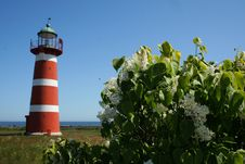 Lighthouse From Sweden Gotland Royalty Free Stock Image