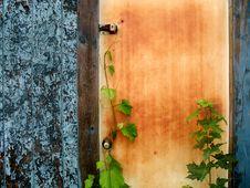 Free Wooden Door Stock Images - 6180934