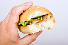 Free Fastfood Royalty Free Stock Photography - 6181027