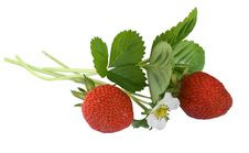 Free Strawberry Royalty Free Stock Image - 6181046