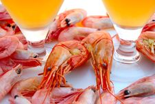 Free Beer And Shrimps (prawns). Royalty Free Stock Photos - 6184018