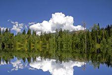 Free Mountain Meadow Stock Photography - 6184132