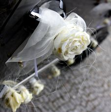 Free Wedding Decorated Car. Royalty Free Stock Images - 6185579