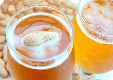 Free Beer In Glass  And Peanuts  In Shells. Stock Photo - 6187390