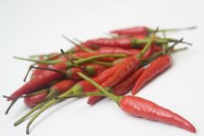 Free Chili Peppers Royalty Free Stock Photos - 6188918