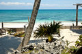 Free Beach Landscape In Tulum Royalty Free Stock Image - 6199816