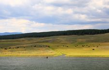 The Scenery Along The Yellowstone River Royalty Free Stock Photography