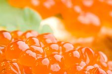 Macro Closeup Sandwich With Red Caviar Royalty Free Stock Photography