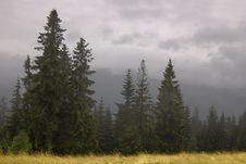 Free Fog In Zakopane Stock Image - 6193711