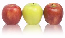 Free Red And Yellow Apples Stock Photo - 6193770