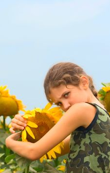 Free Beauty Teen Girl And Sunflower Stock Photography - 6194182
