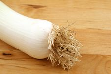 Free Leek Stock Photos - 6194553