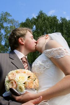 Free Groom And The Bride Stock Images - 6196404