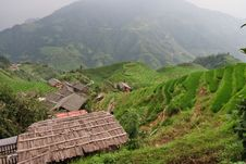 Guilin Rice Field Terrace Royalty Free Stock Photo