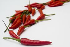 Free Chili Peppers Stock Images - 6199124