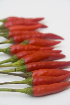 Free Chili Peppers Stock Photos - 6199143