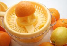 Free Fresh Oranges Royalty Free Stock Photos - 6199408