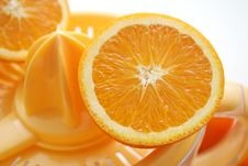 Free Fresh Oranges Stock Photo - 6199650