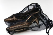 Free Designer Shoes In Storage Net Stock Photography - 6199702