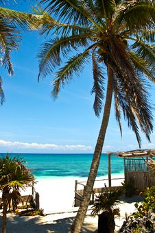 Free Beach Landscape In Tulum Stock Image - 6199991