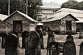 Free Cemetery At Maldives Stock Images - 61934274