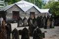 Free Cemetery At Maldives Stock Image - 61934591