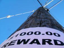 Free One Thousand Dollar Reward Stock Photo - 621220