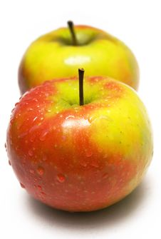 Two Colorful Apples W/ Waterdrops Stock Image