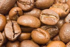Free Textures - Coffee Beans Macro Stock Photo - 623040