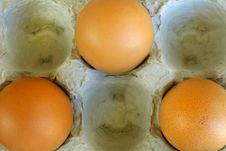 Free Three Eggs Stock Photography - 623632