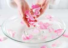 Free Rose Petal Spa Royalty Free Stock Photos - 624588
