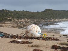 Free Buoy On The Beach Royalty Free Stock Images - 624959