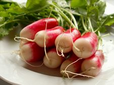 Free Radish Royalty Free Stock Photo - 625395