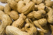 Free Monkey Nuts Stock Photography - 625772